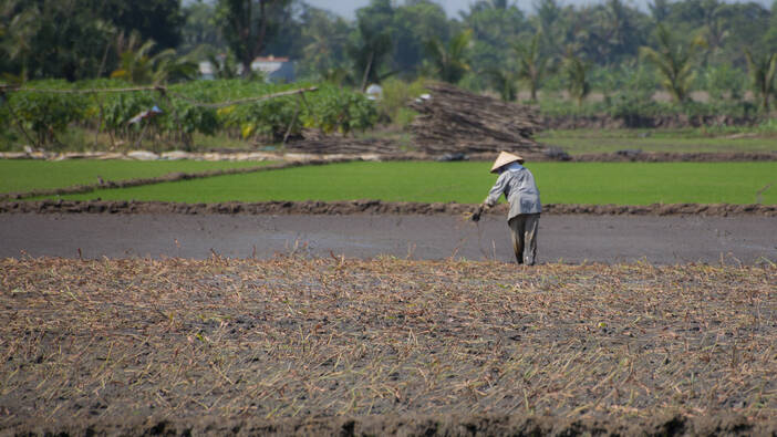 The Many Climate Challenges Facing the Mekong Delta