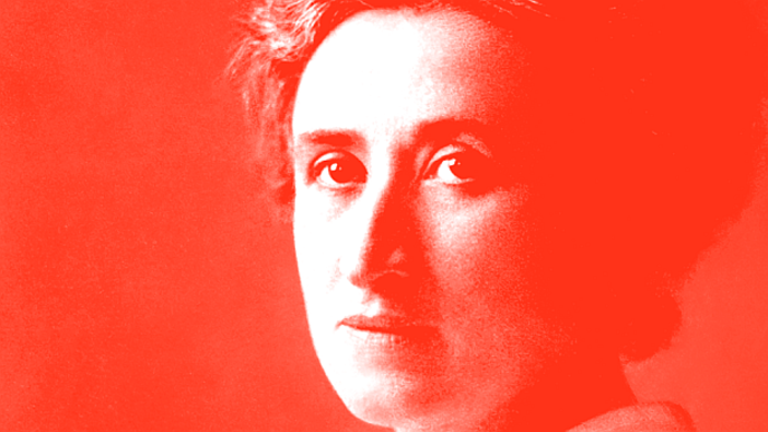 Rosa Luxemburg in the German Revolution: A Chronicle